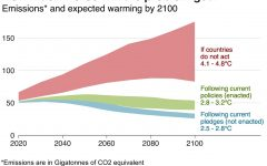 What the pandemic means for climate change