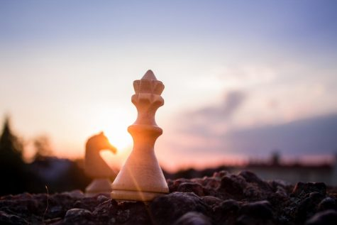 Chess captures minds during COVID-19
